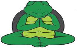 Turtle Meditating
